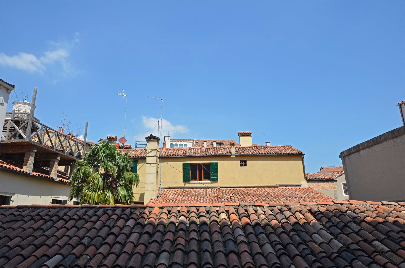 view from the large window on the rooftops
